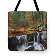 Enders Falls Tote Bag