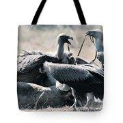 Eurasian Griffon Vulture Gyps Fulvus Tote Bag