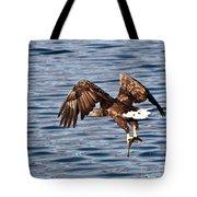 European Fishing Sea Eagle 4 Tote Bag