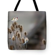 European Goldfinch Tote Bag