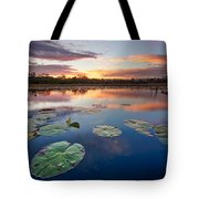 Everglades At Sunset Tote Bag