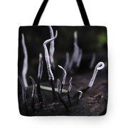 Fairy Fingers Tote Bag