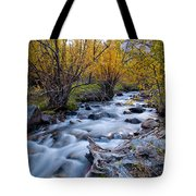Fall At Big Pine Creek Tote Bag by Cat Connor