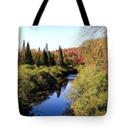 Fall Colors Tote Bag