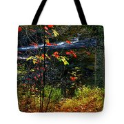 Fall Forest And River Tote Bag