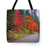 Fall's Splendor Tote Bag