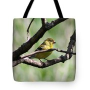 Female American Goldfinch Tote Bag