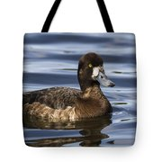 Female Scaup Tote Bag