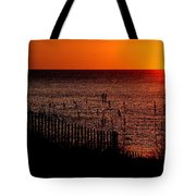 Fence And The Sun Tote Bag