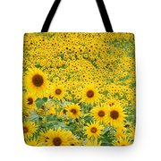 Field Of Sunflowers Helianthus Sp Tote Bag
