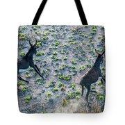 Fish River Protected Area, Australia Tote Bag