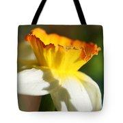 Floral Cup  Tote Bag
