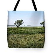 Florida Bay Everglades Tote Bag