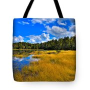 Fly Pond In The Adirondacks Tote Bag by David Patterson