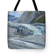 Fox Glacier Tote Bag