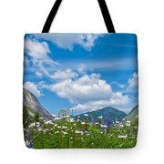 Franconia Notch - Lupine And Daiseys  Tote Bag
