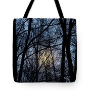 Frosted Winter Moon Tote Bag