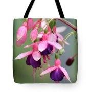 Fuchsia Named Lambada Tote Bag