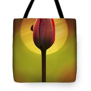 Garden Stories II Tote Bag