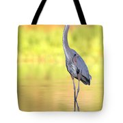 Gbh At First Light Tote Bag