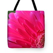 Gerbera Daisy Named Raspberry Picobello Tote Bag