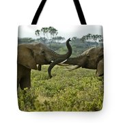 Getting Acquainted Tote Bag