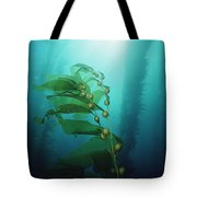 Giant Kelp Macrocystis Pyrifera Forest Tote Bag