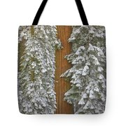 Giant Sequoias And Snow  Tote Bag by Yva Momatiuk John Eastcott