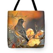 Glowing Robin Tote Bag
