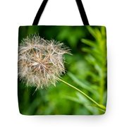 Goat's Beard Tote Bag