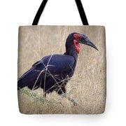 Ground Hornbill Tote Bag