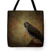 Hawk Tote Bag