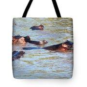 Hippopotamus Group In River. Serengeti. Tanzania. Tote Bag