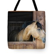 Horse In Stable Tote Bag