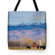 Hot Air Balloon Rocky Mountain Country View Tote Bag