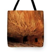 House On Fire Ruin Tote Bag