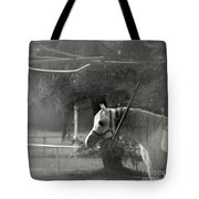 In The Captivity Tote Bag