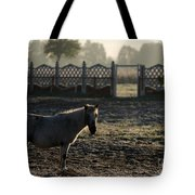 In The Frosty Morning Tote Bag