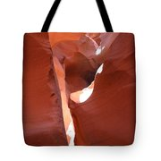 Incidence Of Light Tote Bag