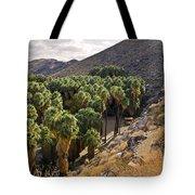 Indian Canyons - California Tote Bag