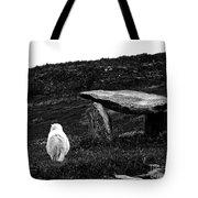 Irish Standing Stones Tote Bag by Patricia Griffin Brett