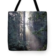 Jedediah Smith Redwoods State Park Redwoods National Park Del No Tote Bag
