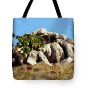 Joshua Tree California Tote Bag