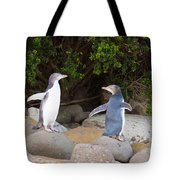 Juvenile Nz Yellow-eyed Penguins Or Hoiho On Shore Tote Bag
