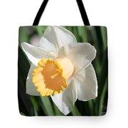 Large-cupped Daffodil Named Mrs. R.o. Backhouse Tote Bag