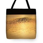 Last Rays Of Light Tote Bag