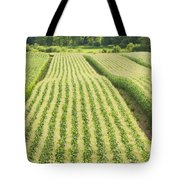 Late Summer Corn Field In Maine Tote Bag