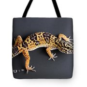 Leopard Gecko Eublepharis Macularius Tote Bag