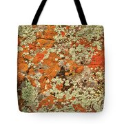 Lichen Abstract Tote Bag