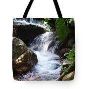 Lower Granite Falls Tote Bag
